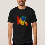 Fire Breathing Rainbow Kitten Shirt