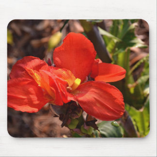 Fire Colored Flower Mouse Pad