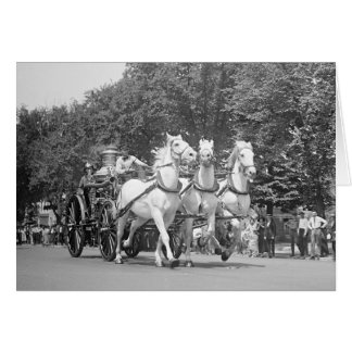 Fire Department Horses, 1925 Card