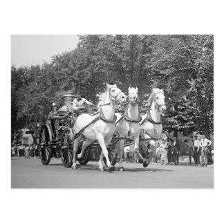 Fire Department Horses, 1925 Postcard