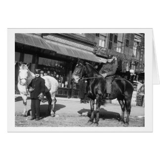 Fire Engine Horses, 1910 Greeting Card