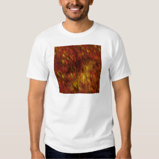 Fire Flakes T-shirt