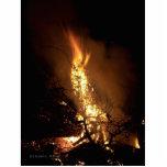 Fire flame man shape burning bonfire picture photo cut out