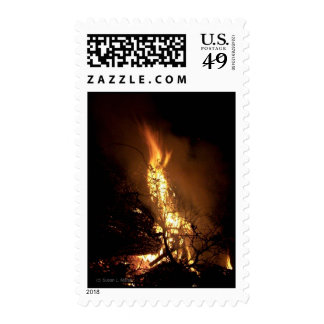 Fire flame man shape burning bonfire picture postage stamp