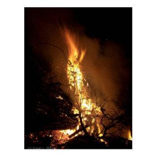 Fire flame man shape burning bonfire picture postcards
