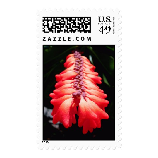 Fire Flower Postage