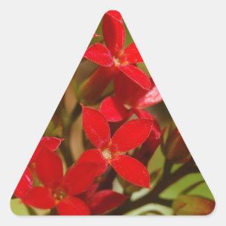 Fire Flower Triangle Sticker