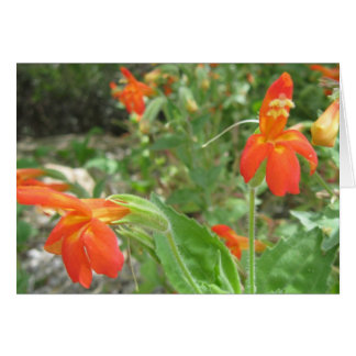 Fire flowers stationery note card