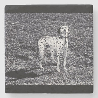 Fire House Dalmatian Dog in Black and White Ink Stone Coaster