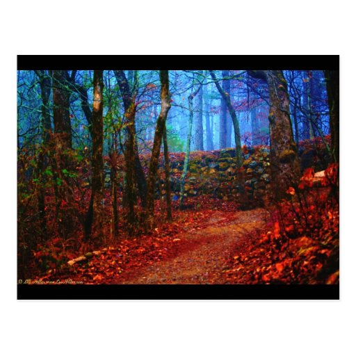Fire & Ice Forest Oil Painting Gifts Apparel Postcard