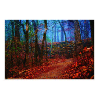 Fire & Ice Forest Oil Painting Painted Photography Poster