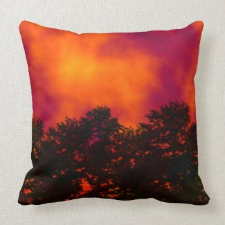 Fire in the Sky American Mojo Pillow Throw Pillows