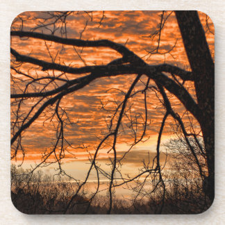 Fire in the Winter Morning Sky Drink Coaster