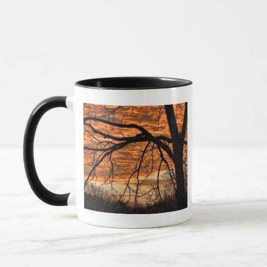 Fire in the Winter Morning Sky Mug