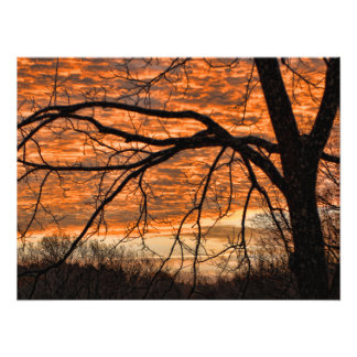 Fire in the Winter Morning Sky Photo Art