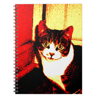 Fire Kitten Notebook