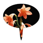 Fire Lily, a Cyrtanthus Hybrid Cake Topper