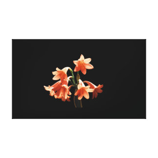 Fire Lily, a Cyrtanthus Hybrid Gallery Wrap Canvas