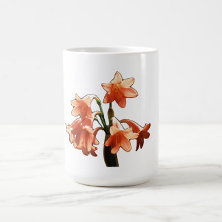 Fire Lily, a Cyrtanthus Hybrid Coffee Mug