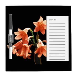 Fire Lily, a Cyrtanthus Hybrid Dry Erase Board