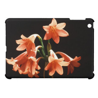 fire lily case for the iPad mini
