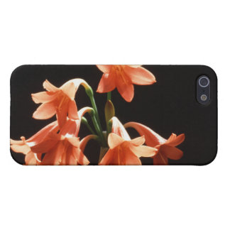 fire lily cover for iPhone SE/5/5s
