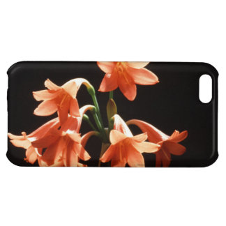 fire lily iPhone 5C covers