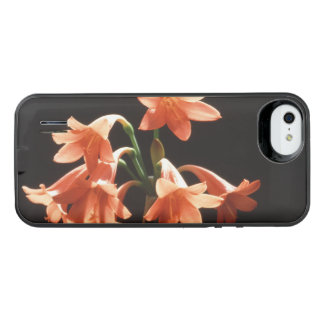 fire lily iPhone SE/5/5s battery case