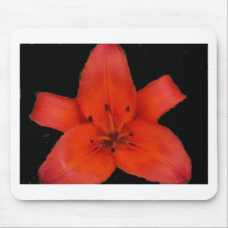 Fire Lily Sacred Star Mouse Pad
