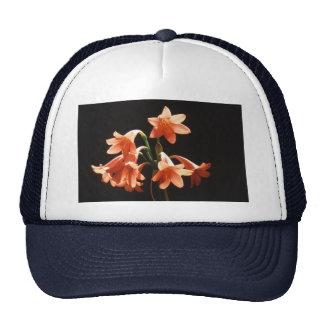 fire lily trucker hat