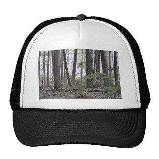 Fire Line Trucker Hat