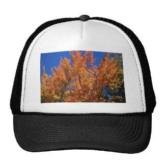 Fire Orange Tree Trucker Hat