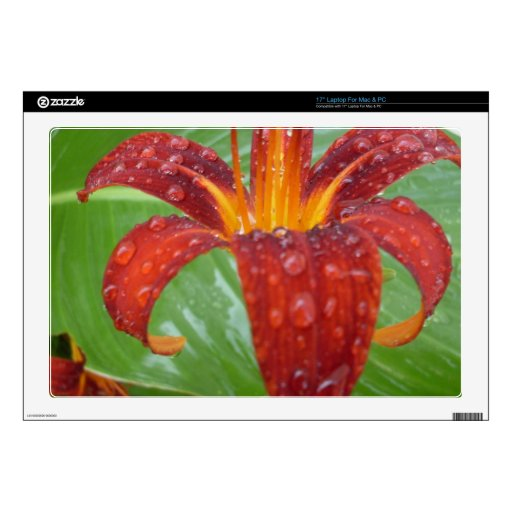 "fire red and orange lily w/ dew skin for 17"" laptop"