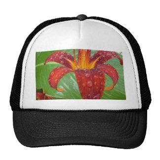 fire red and orange lily w/ dew trucker hat