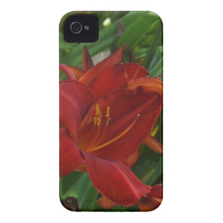 Fire Red Lily iPhone 4 Case