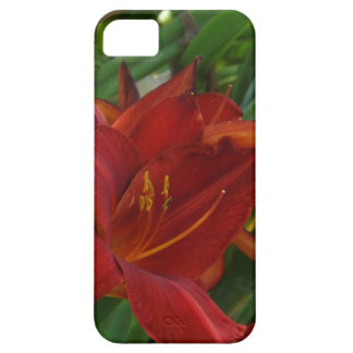 Fire Red Lily iPhone 5 Case