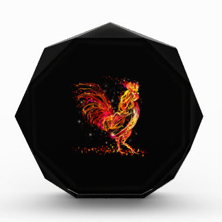 Fire rooster. Flaming animal sparkle cool design Award