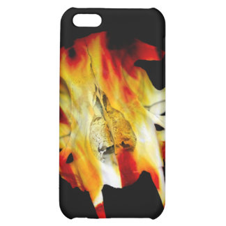 Fire Saber Tooth Cat Skull iPhone4 iPhone 5C Covers