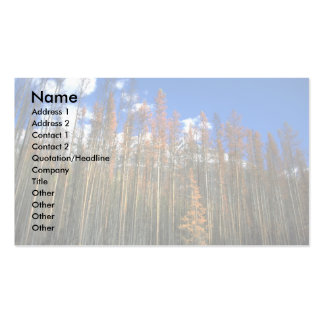 Fire scorched forest in Banff National Park, Alber Double-Sided Standard Business Cards (Pack Of 100)
