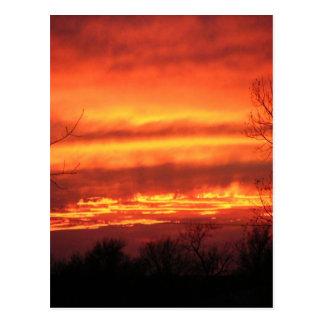 Fire Sky Postcard