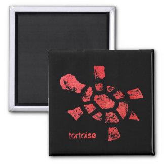 Fire tortoise magnet