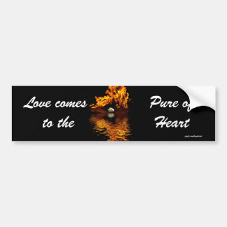 Fire & White Rose Flower Romance Bumper Sticker