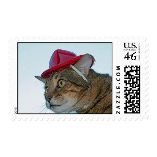 firecat postage