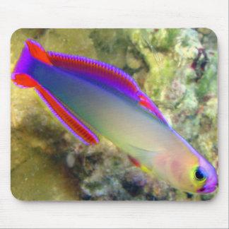 Firefish púrpura Mousepad