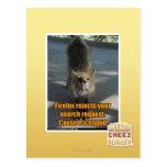 Firefox rejects postcard