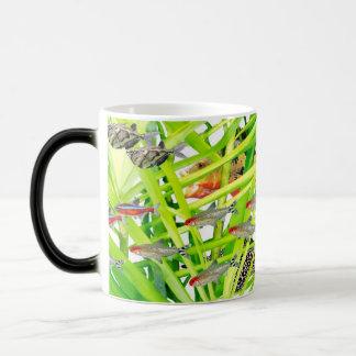 Firehead tetras magic mug