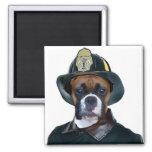 Fireman boxer dog magnet