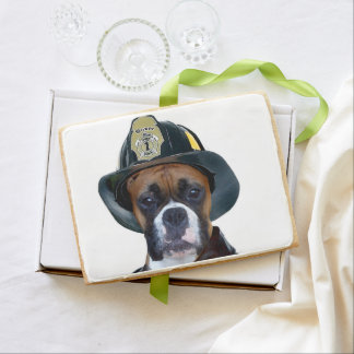 Fireman boxer dog shortbread cookie