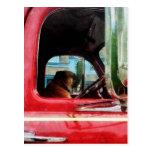 Fireman's Best Friend Postcard