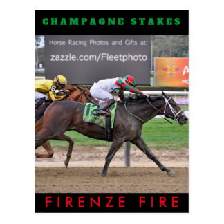 Firenze Fire Zazzles Postcard